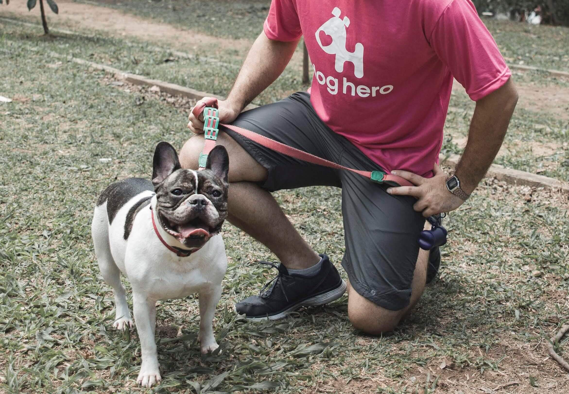 cachorro feliz dog walker doghero